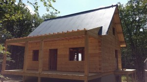 felt paper over T&G, beam & purlin roof, log home under construction, custom built log home, Timberhaven, kiln dried, laminated