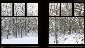 looking through the windows of a log cabin into a snowy wooded setting, log cabin, log cabin homes, log homes, log cabin kits, Timberhaven, under construction, post and beam, laminated, kiln dried, PA manufacturer