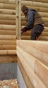 builder using calk gun during log wall construction, solid log breezeway, Log Homes, log homes, log cabin homes, log cabins, post and beam homes, timberframe homes, timber frame homes, laminated logs, engineered logs, floor plan designs, kiln dried logs, Flury Builders, Joe Walsh, Timberhaven local reps, log homes in Massachusetts, log homes in Rhode Island, MA, RI, log home builders, solid log breezeway