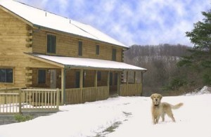 dog playing in snow by log home, canines in your log home design, log homes, log cabin homes, log cabins, post and beam homes, timberframe homes, timber frame homes, laminated logs, engineered logs, floor plan designs, kiln dried logs, Timberhaven local reps, log homes in Pennsylvania, log homes in PA, Timberhaven Log Homes, Timberhaven Log & Timber Homes