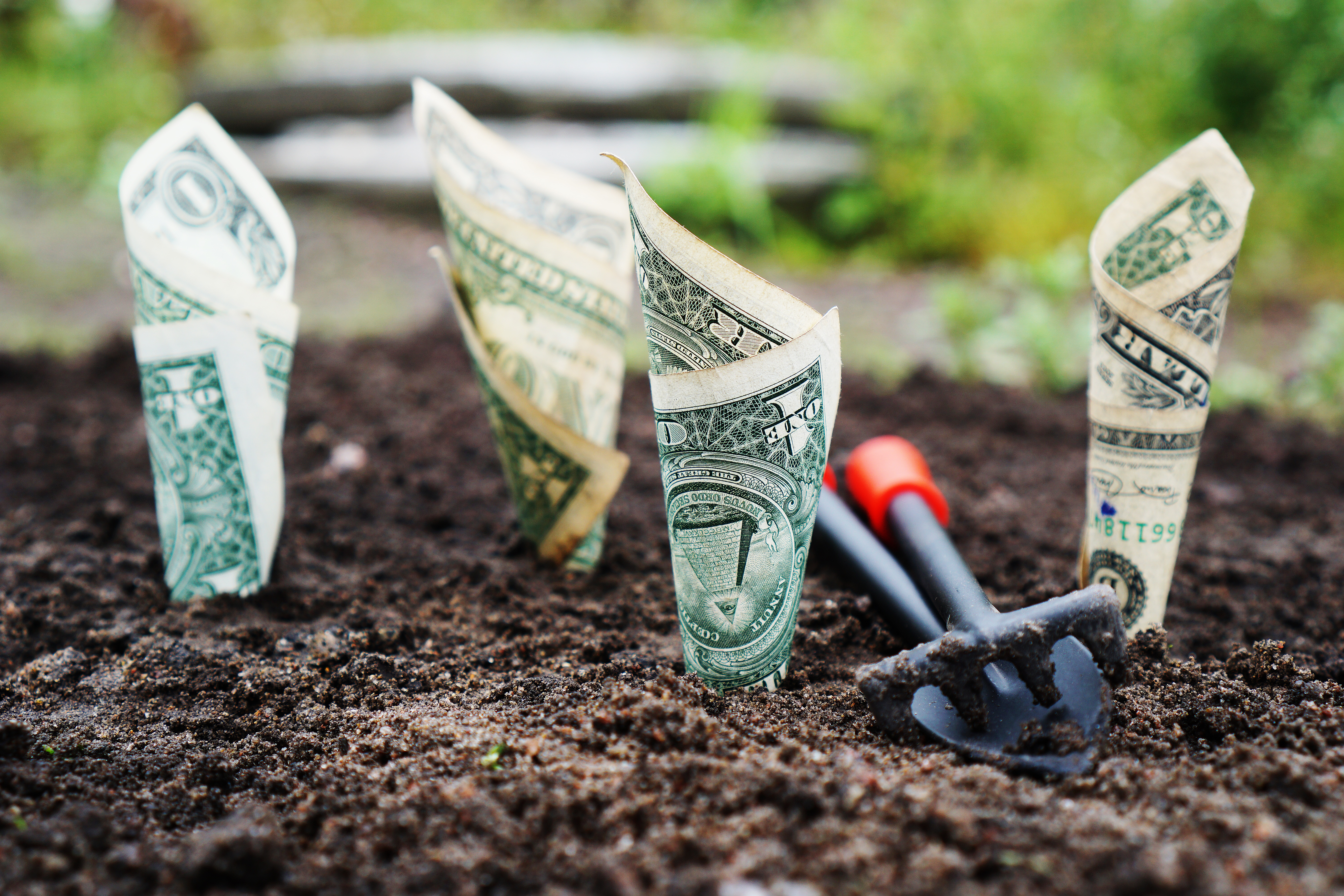 Green Living Tips That Pay for Themselves: Start Saving Today