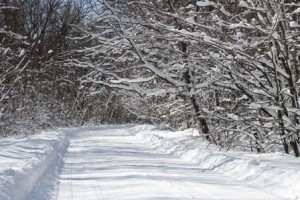 road covered with snow, built in the winter, winter build, log home winter, building a log home in the winter, building a timber frame home in the winter, Timberhaven